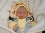 Geburten 2010