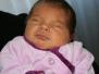 Geburten 2012